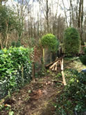 New Garden Fencing and Landscaping in West Hill, Devon